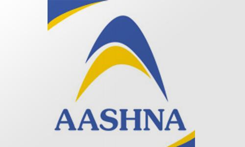 Aashna Cloudtech bags