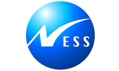 Ness Software Engineering Services