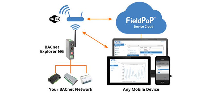 Cloud-Connected Network Discovery