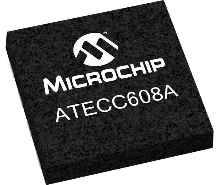 Cryupto Microchip
