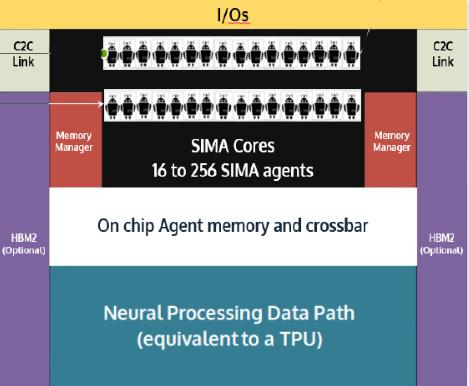 Neural Processing Data