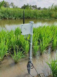 Soil Monitoring System