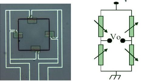Piezo Resistor