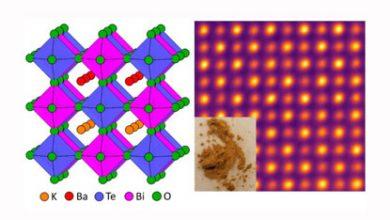 Non-Toxic Solar Cells